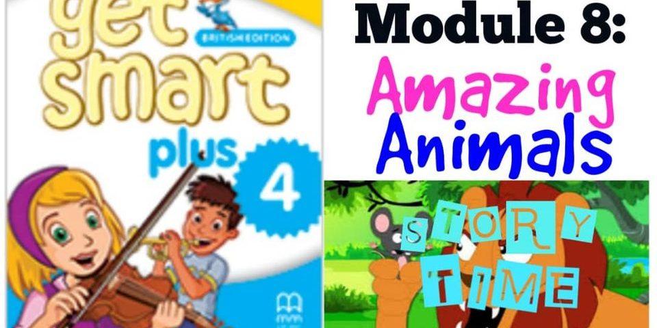 module-8-amazing-animal